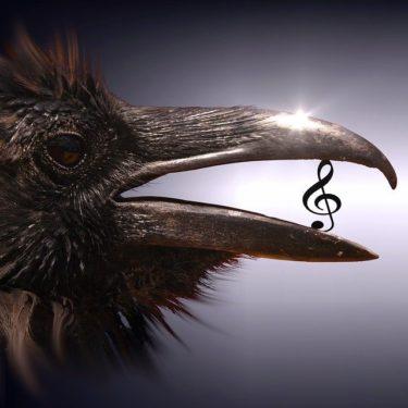 音楽の才能、どうやって活かす?